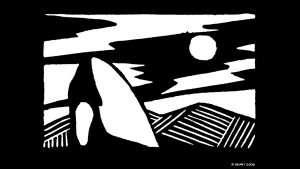 Orca Spyhop No. 1
