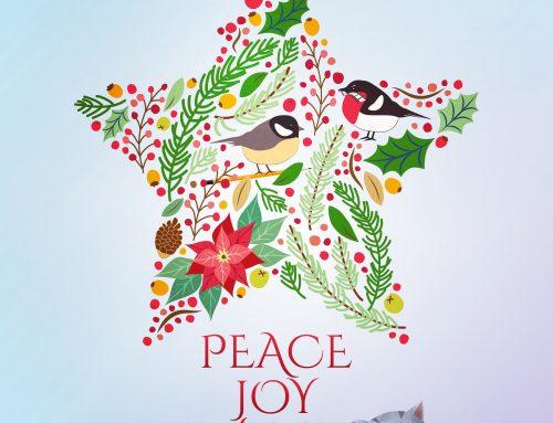 Hello Winter and Happy Holidays!